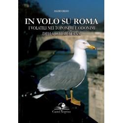 In volo su Roma, i volatili...