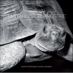Voglio una tartaruga terrestre